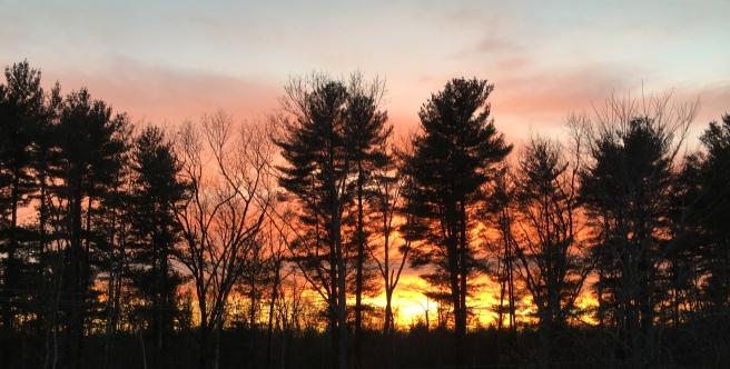 sunsetnovember