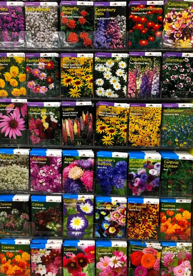 flower seeds crop