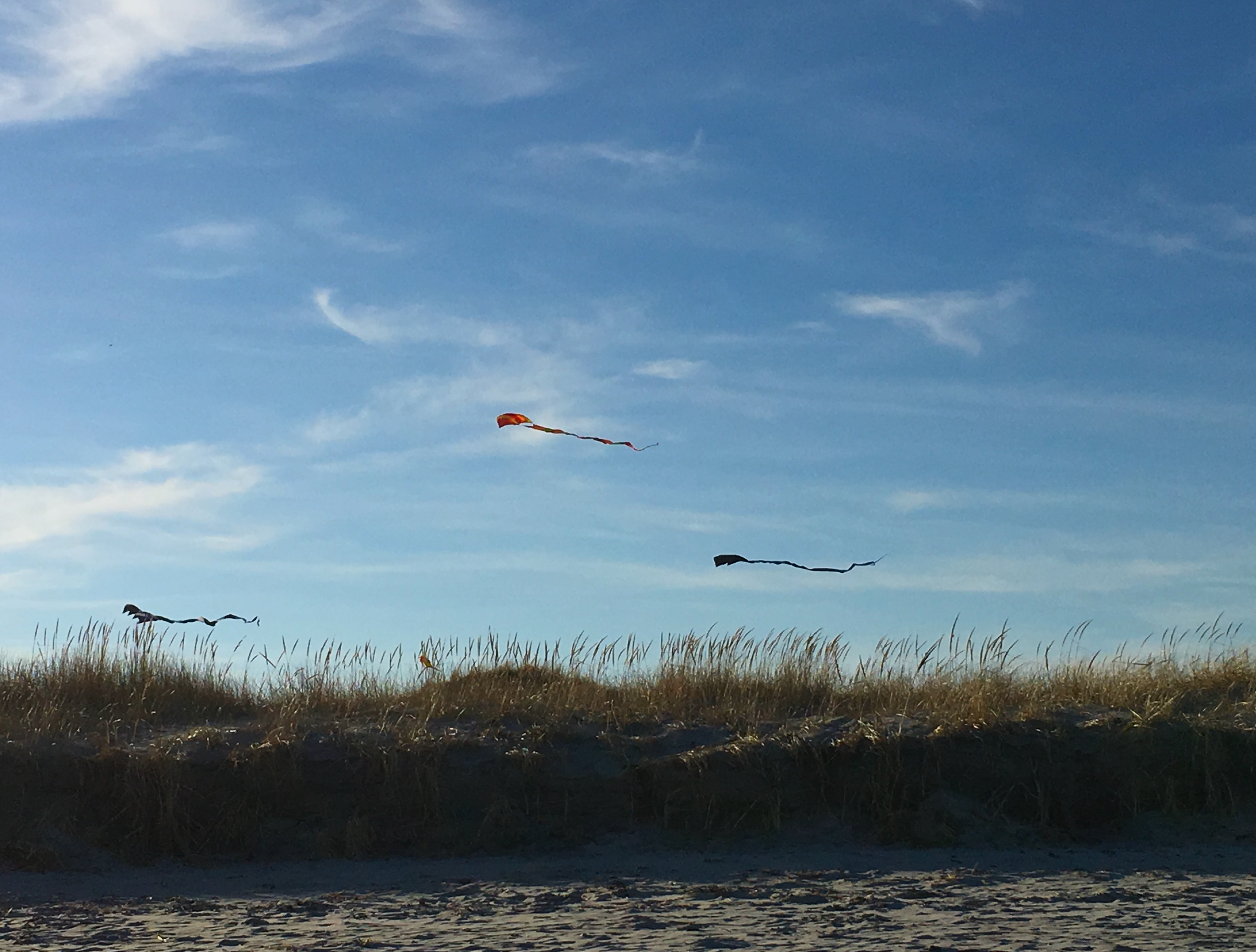meme kites