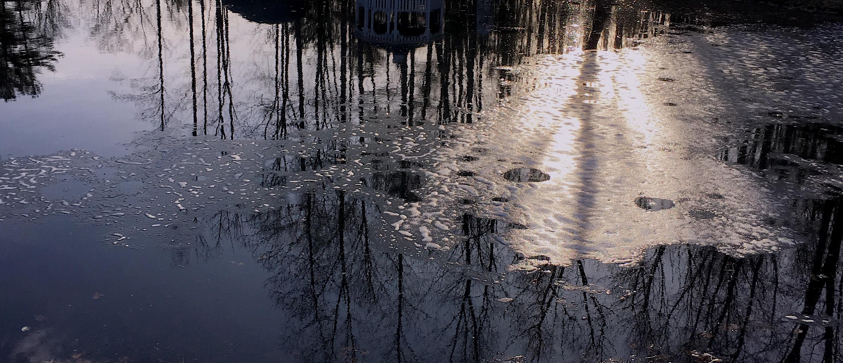 pond shimmer