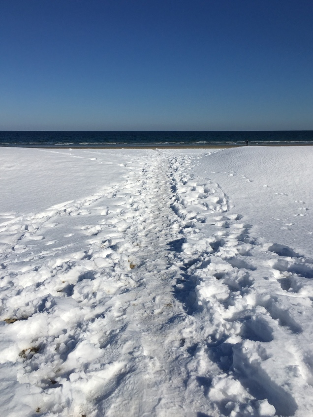 snow beach path
