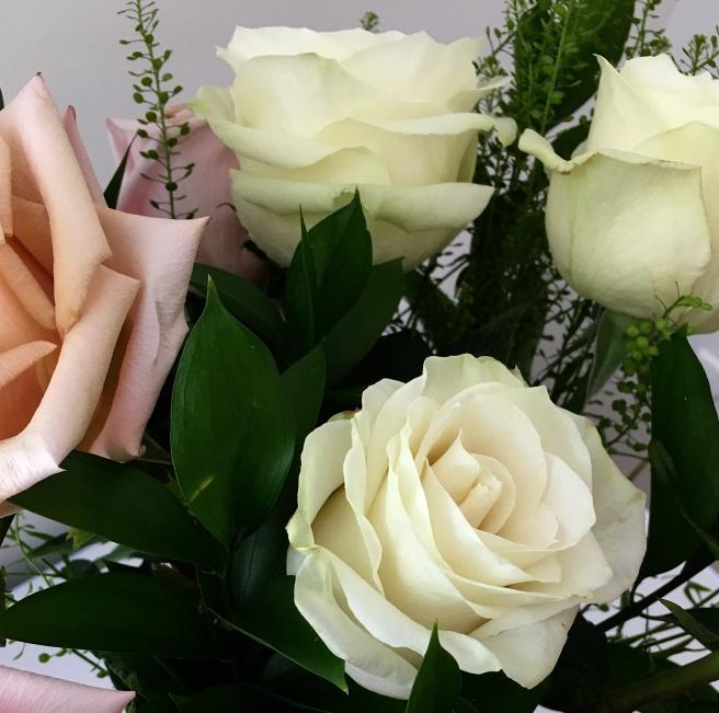 aging roses