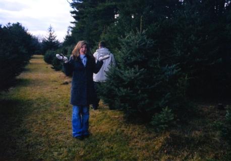 2003 tree027 copy