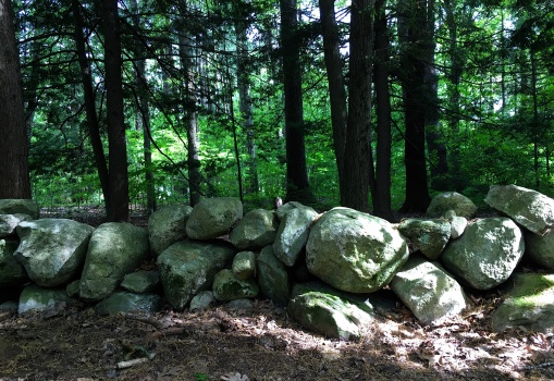 rock wall woods