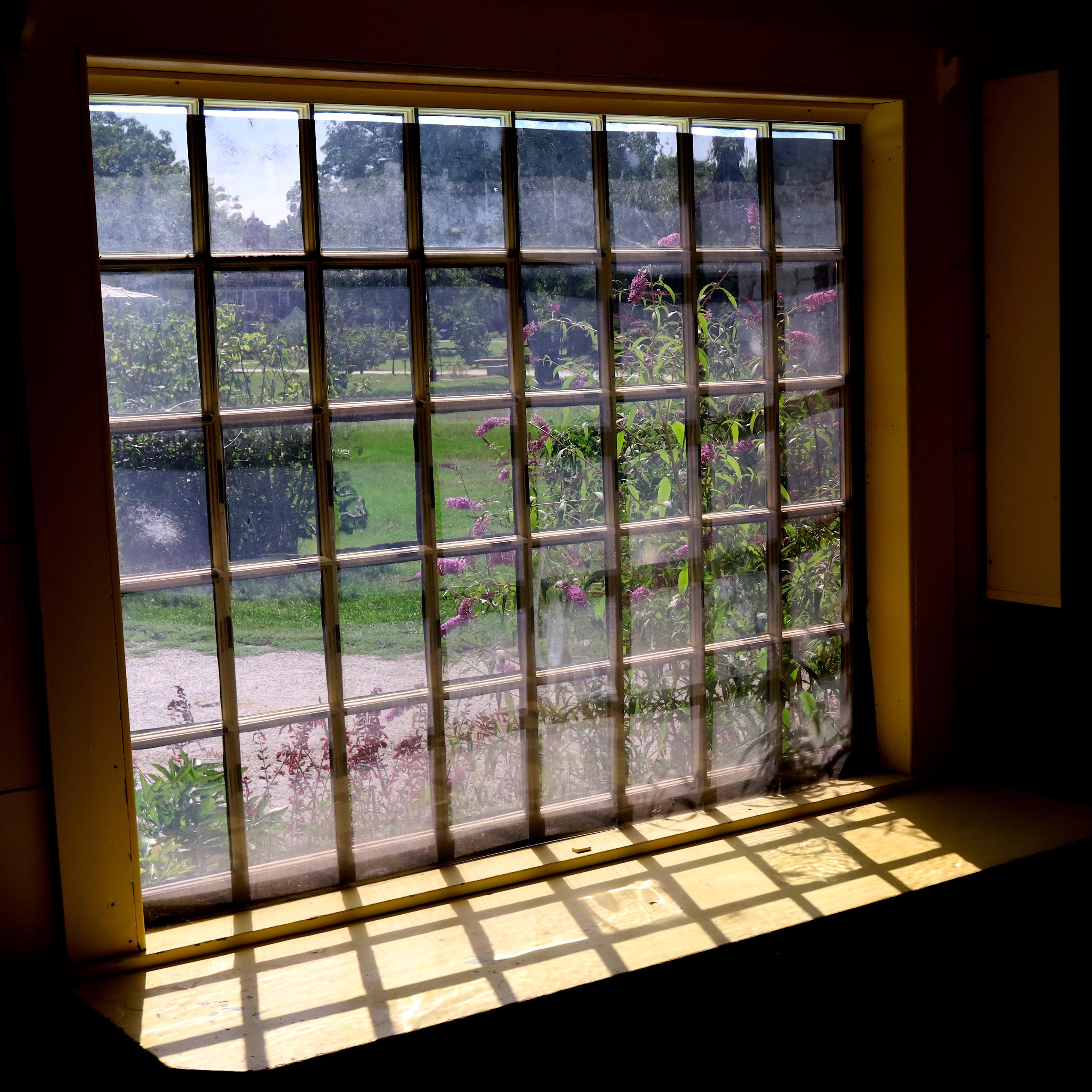 window-of-lines.jpg
