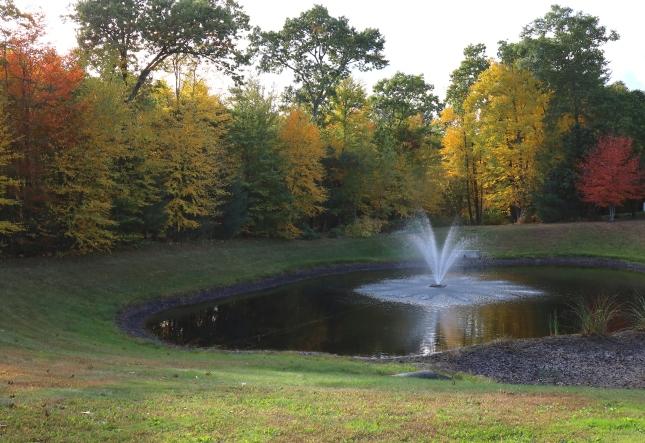 sloping pond