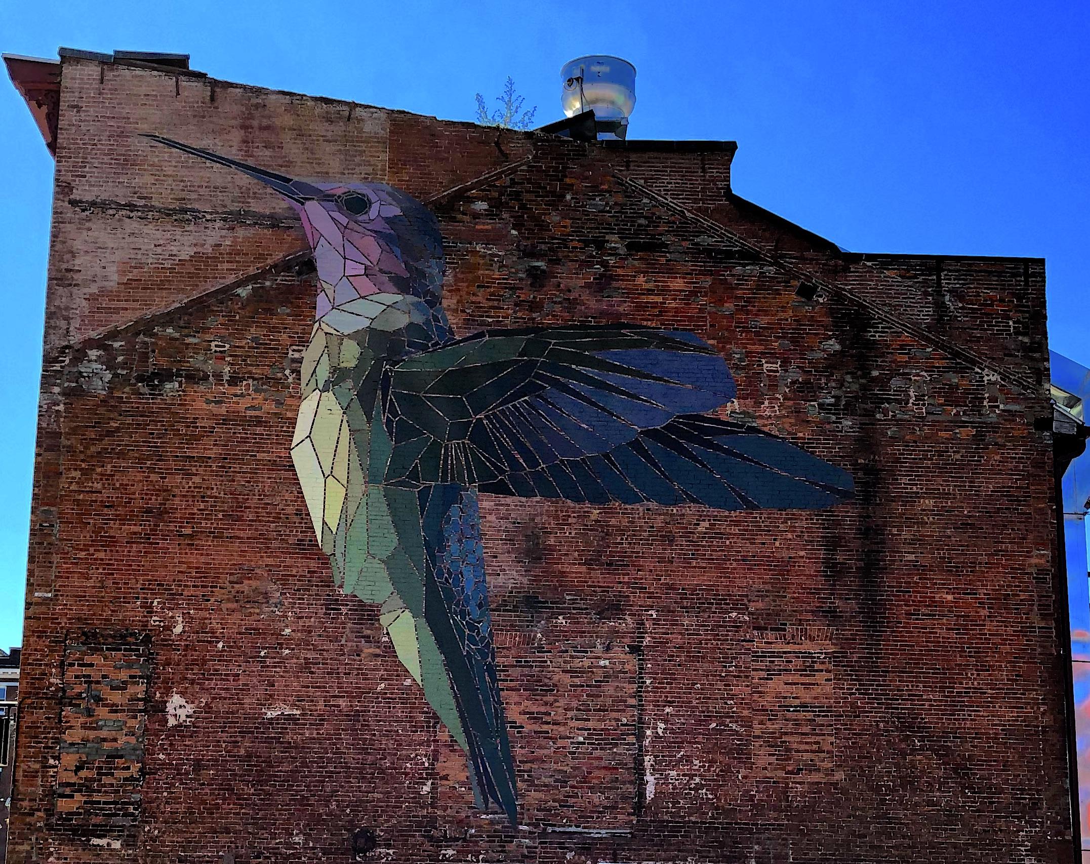 bird on wall