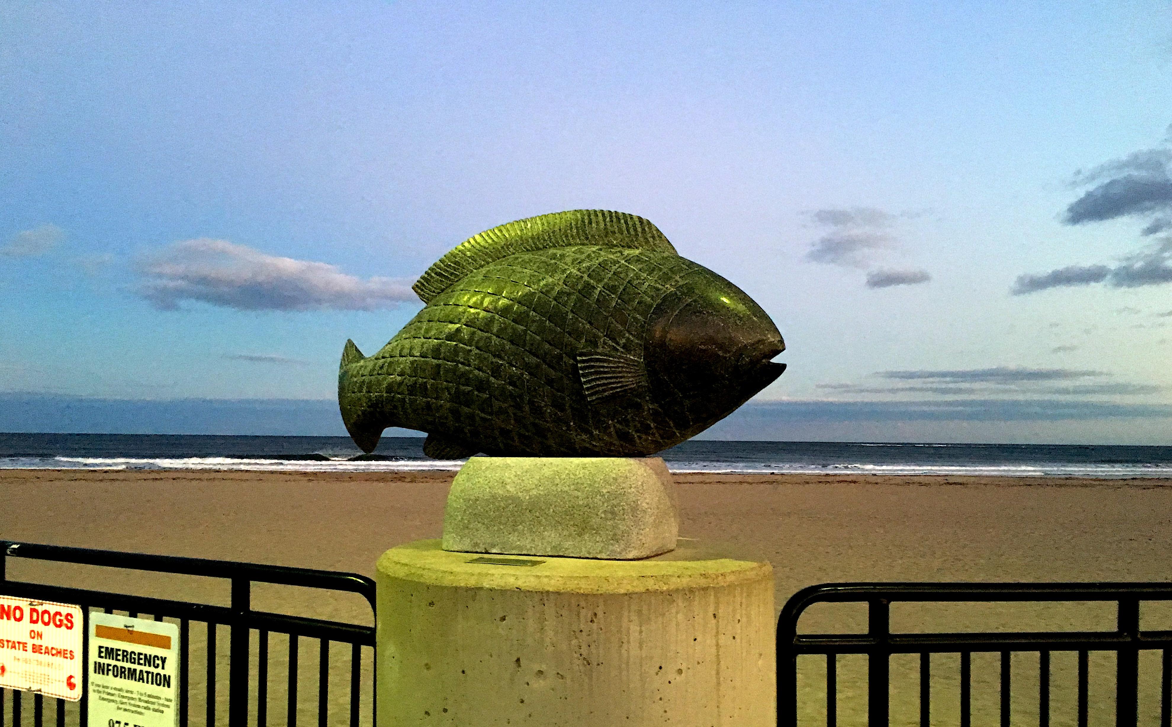 seascape fish